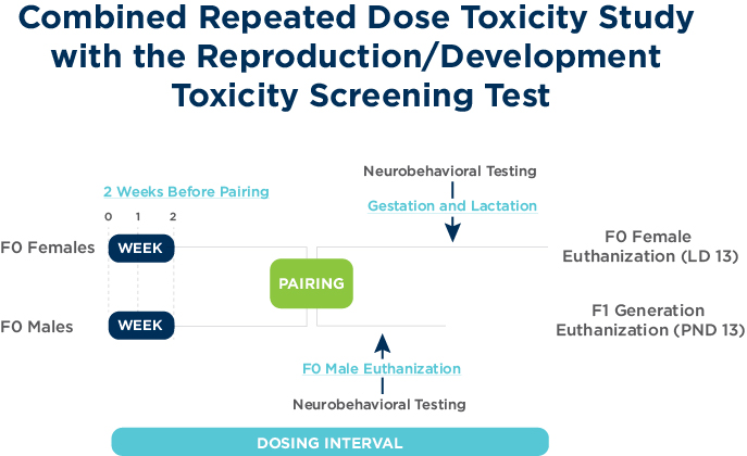 Combined Repeated Dose Toxicity Study with the Reproduction/Development Toxicity Screening Test
