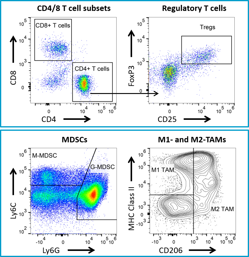 Fig. 5: Flow cytometry immune profiling for 4T1-luc2 tumors.