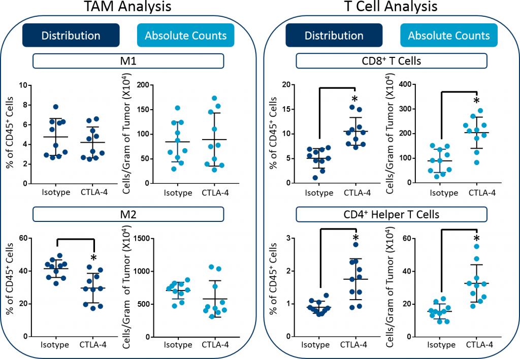 Fig. 3: Distribution versus absolute count measurements of M1 and M2 TAMs, CD8+ T cells, and CD4+ helper cells in CT26 tumors. Statistical analysis was performed using a Student's t-test (*p<0.05).