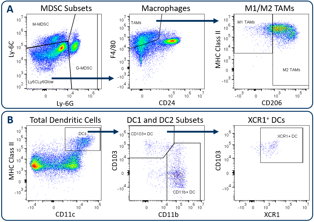 Figure. 1. Analysis of tumor-infiltrating myeloid subsets using the Expanded CompMyeloid™ panel.
