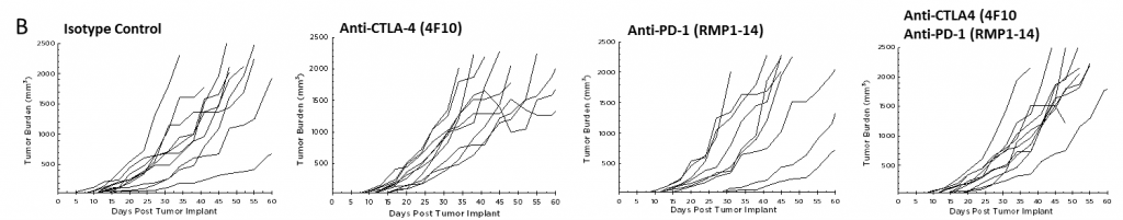 Fig. 2B – Efficacy of Anti-PD-1 and Anti-CTLA-4 Against Pan02 Pancreatic Tumors